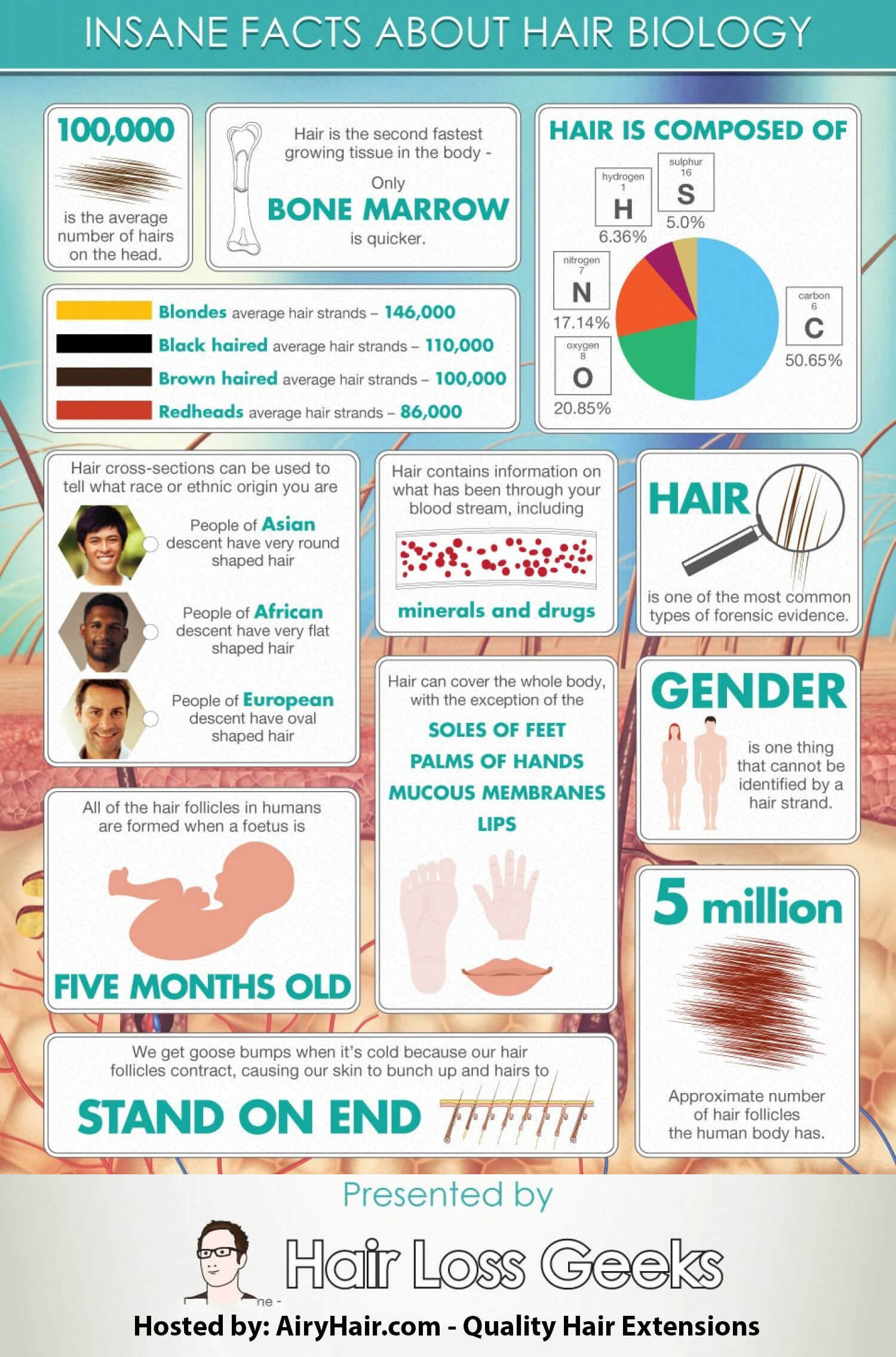 Top 10 Facts About Hair Biology