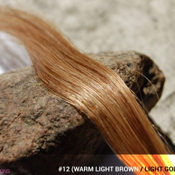 #12 (Warm Light Brown / Light Reddish Brown / Light Golden Brown) Hair Color
