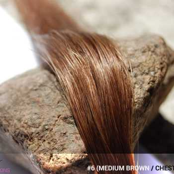 #6 (Medium Brown / Chestnut Brown) Hair Color