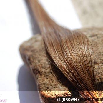 #8 (Brown / Light Chestnut Brown) Hair Color