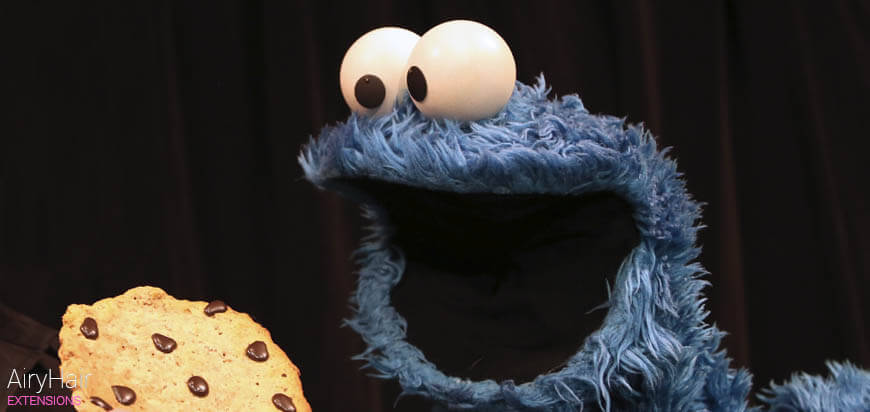 Cookie Monster A Cookie Halloween Costume Idea