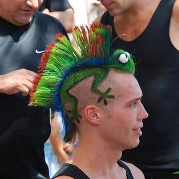 Amazing Colored Gecko Haircut