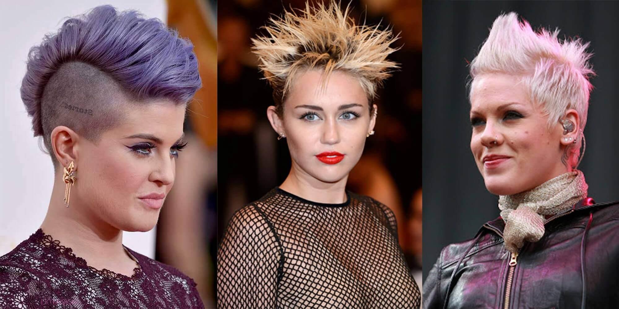 Celebrity Punks